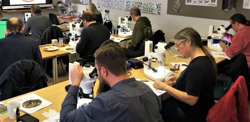 Using microscopes at FSC London: Bushy Park