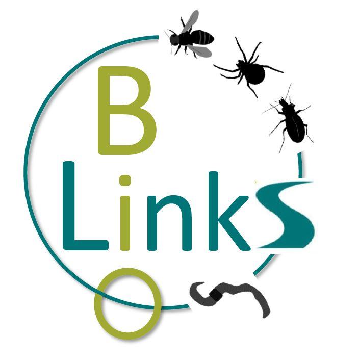 BioLinks Logo