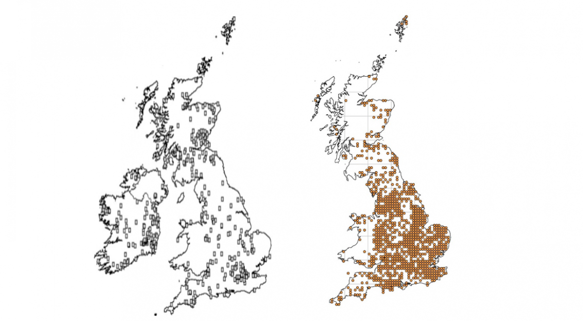 Maps showing the total number of UK earthworm records in 2009 (left) and 2017 (right)