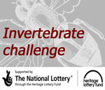 Invertebrate Challenge project website